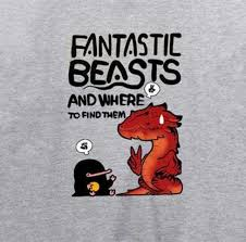 fantastic beasts and where to find them sweatshirt for teens