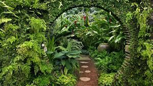 nature flowers garden plants gate sri lanka wallpaper 1920x1080