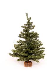 christmas tree on white background stock photo image 1554710