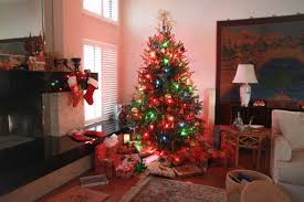 tree paintings art photo gallery a beautiful colored oil painting the anthropological oddities of christmas tree shopping faine opines privileged american children tend to assume a