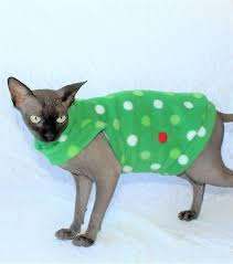 sphynx sweaters sphynx cat find out about with a hairless cat breed