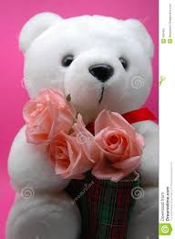teddy bear and pink roses royalty free stock photos image 486438