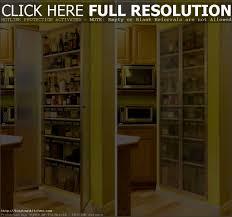 Kitchen Storage Pantry by Bathroom Astounding Modern Fascinating Kitchen Storage Pantry