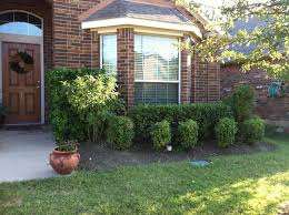 Front House Landscaping by Front Yard Landscaping For Alluring Yard In Huge Home Amaza Design