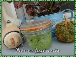 cuisiner les fanes de radis pesto aux fanes de radis recette iterroir