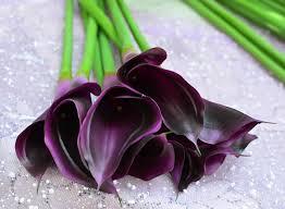 Silk Calla Lilies Artificial Purple Calla Lilies Calla Lily Artificial Flower
