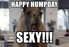 Sexy Hump Day Memes - happy humpday sexy geico camel hump day meme generator