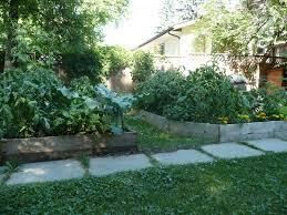 square foot vegetable garden layout veggie delight a manitoba garden square foot gardening