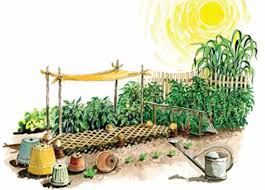 organic gardening advice our complete garden know how series