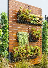 wall garden indoor delightful indoor vertical wall garden part 14 delightful indoor