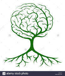 brain tree concept of a tree growing in the shape of a human brain