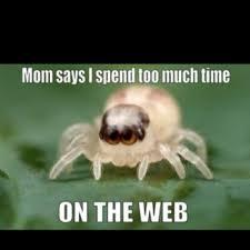 Cute Spider Meme - spider puns