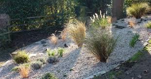 garden design garden design with studland gravel garden tigress