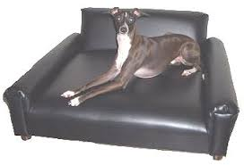 Modern Dog Furniture by Dog Furniture Pet Furniture The Most Comfortable Dog Sofas Ever
