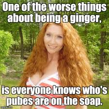 Ginger Memes - ginger imgflip