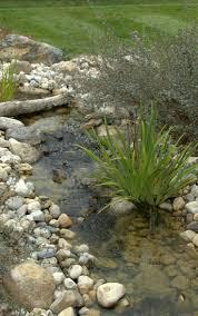 triyae com u003d backyard ponds and streams various design