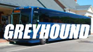 How is bus travel in the united states going greyhound