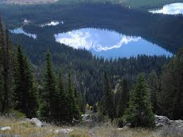 Wyoming forest images Free images tree wilderness valley mountain range reservoir jpg