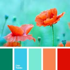 best 25 coral color palettes ideas on pinterest coral color