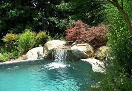 Natural Swimming Pool Natural Swimming Pool Designs Lightandwiregallery Com