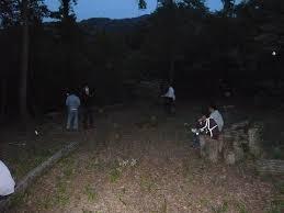 fran輟is bureau しいたけの森プロジェクト 夜のしいたけの森は漆黒の闇 の巻