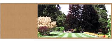 Landscaping Companies In Ct by Martin Landscaping U0026 Horticultural Services Llc Burlington Ct
