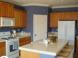 kitchen blue and white dishes sleek subway tile in backsplash