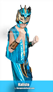 Wwe Sin Halloween Costume Wwe Costumes Masks
