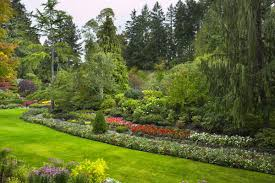 my landscape ideas boost august 2014