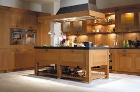 Modern Wooden Kitchen Cabinets Cabinet For Enjoying Cooking Activity Wonderful