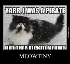 Pirate Meme - pirate memes funny pirate pictures memey com