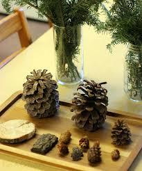 preschool winter activities with evergreen trees