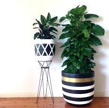 decorative indoor plants decorative planters set of 3 traditional indoor pots and decorative