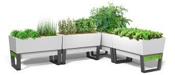 self watering indoor planters self watering planters google search self watering planters