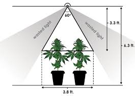 Light Cycle For Weed Grow Hack Increase Light Intensity By 60 With This Simple Trick