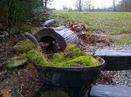make a moss rock garden an ancient wonderland