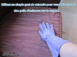 nettoyer l urine de sur un canapé nettoyer urine de sur canape tissu conceptions de la maison