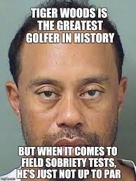 Tiger Woods Meme - not up to par imgflip