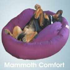 Dog Sofas For Large Dogs by Mammoth Dog Beds For Large Dogs Usa Vet Recommended Beds