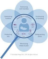 the neonatal integrative developmental care model advanced
