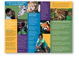 zoo brochure template 63 best art217 brochure thornton images on brochures