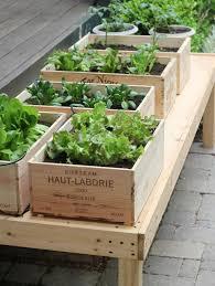 small kitchen garden ideas diy small space vegetable garden remodelista