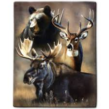 moose gifts u0026 decor american expedition