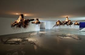 tree roots emerge from ceiling
