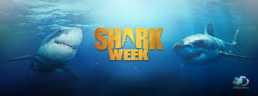 shark week discovery communications inc excited for shark week here s all the different ways you can celebrate