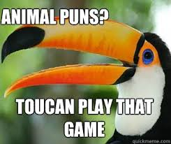 Animal Pun Meme - toucan play that game animal puns toucan quickmeme