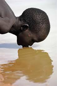 sample uc essay essay water essay on water borne diseases transmission dimension essay on water borne diseases transmission dimension and water borne diseases