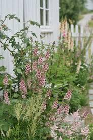 188 best cottage garden borders images on pinterest gardens
