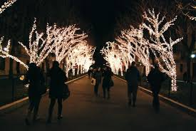 tree lighting ceremony tonight bwog