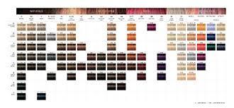 igora royal hair color color to develiper ratio amazon com schwarzkopf professional igora royal hair color 9725